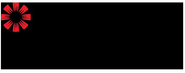 ST Electronics_Satcom & Sensor Systems_CMYK logo.png
