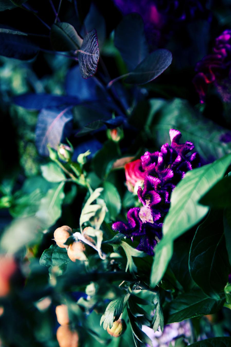 CHALET 06_PHOTO RENEE STAMATIS.jpg