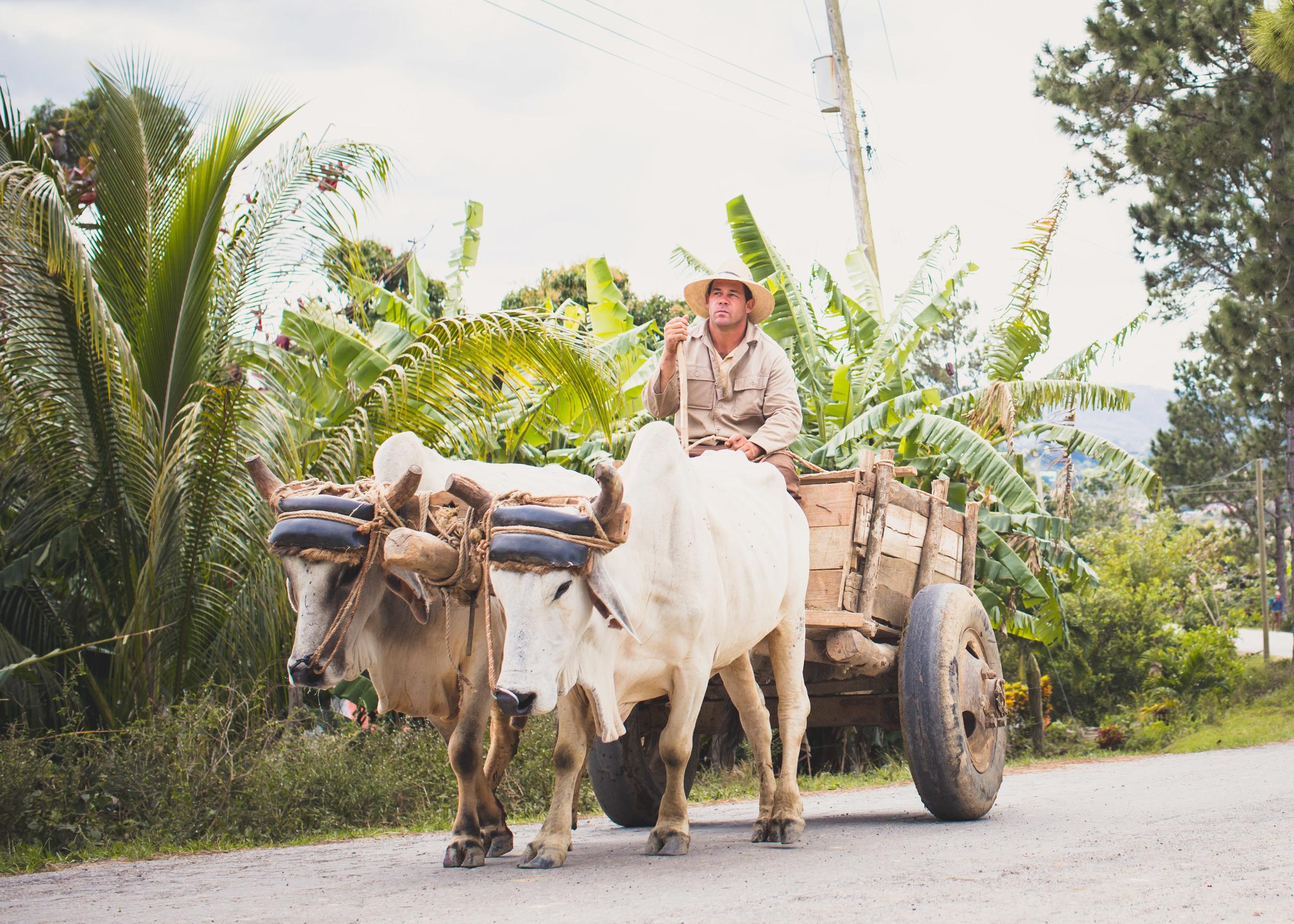 CubaBlog2-51.jpg