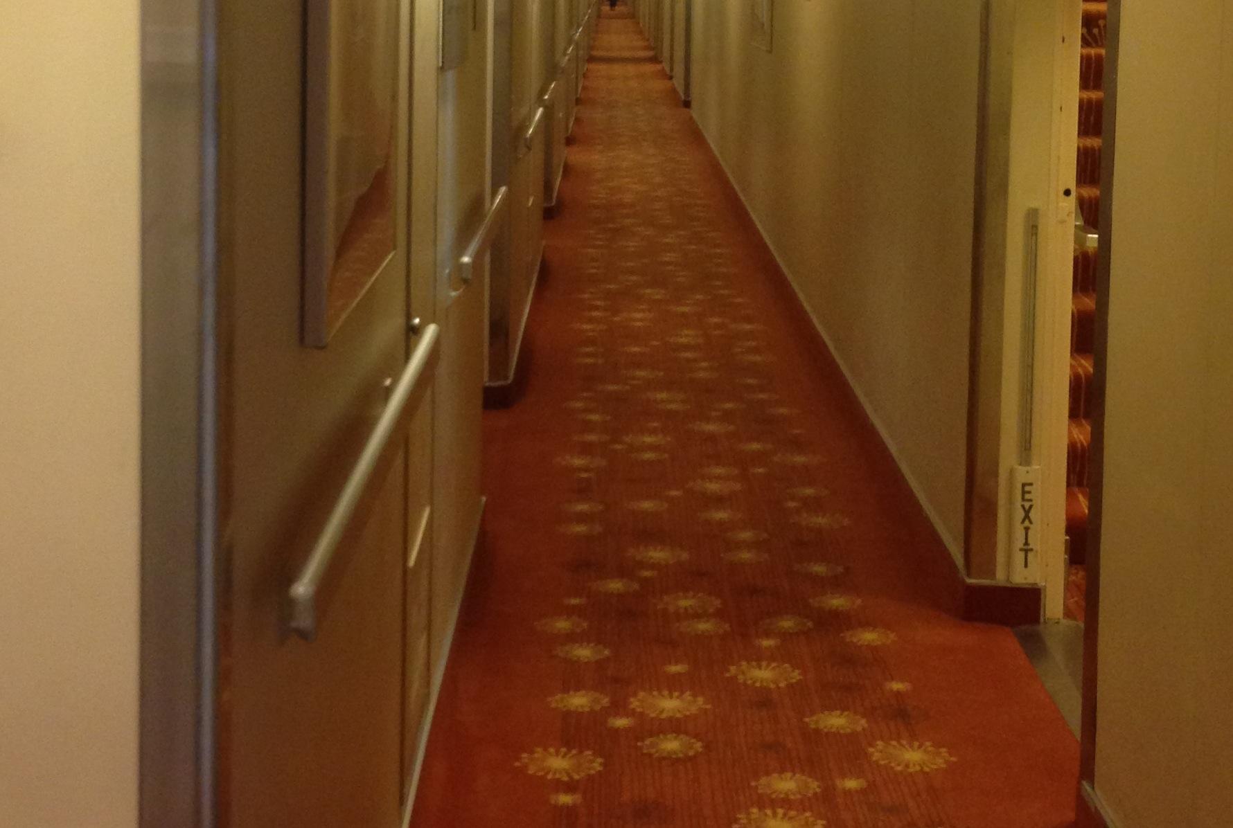 Hallway carpet.jpg