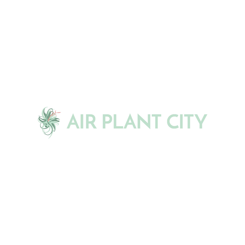 Air Plant City Logo Images-12.png