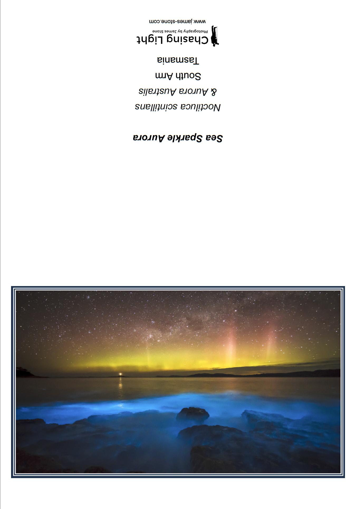 Sea Sparkle Aurora.png