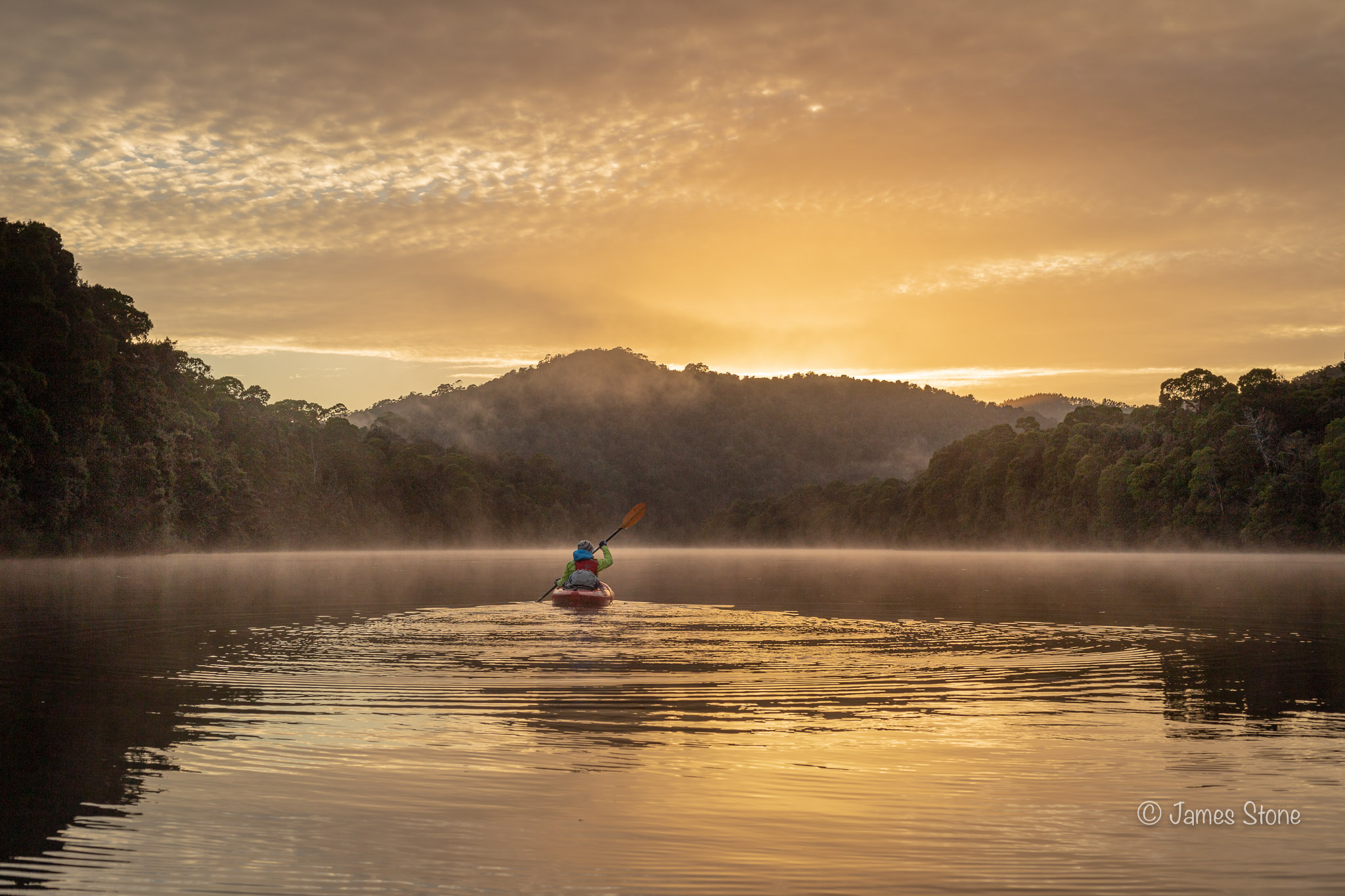 Dawn paddle, Pieman River