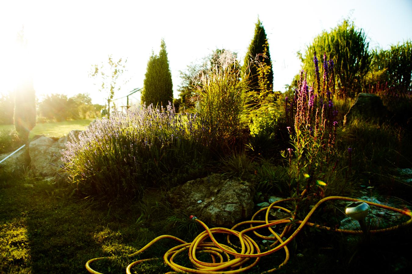 petersgarten_ben_hupfer-014.jpg