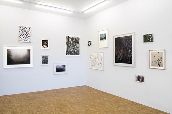 Ausstellungsansicht Galerie Brigitte Rosenberg 2016