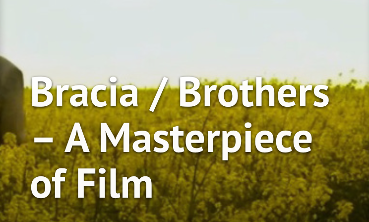 https://tadhgcoakley.com/2016/11/13/braciabrothers-a-masterpiece-of-film/