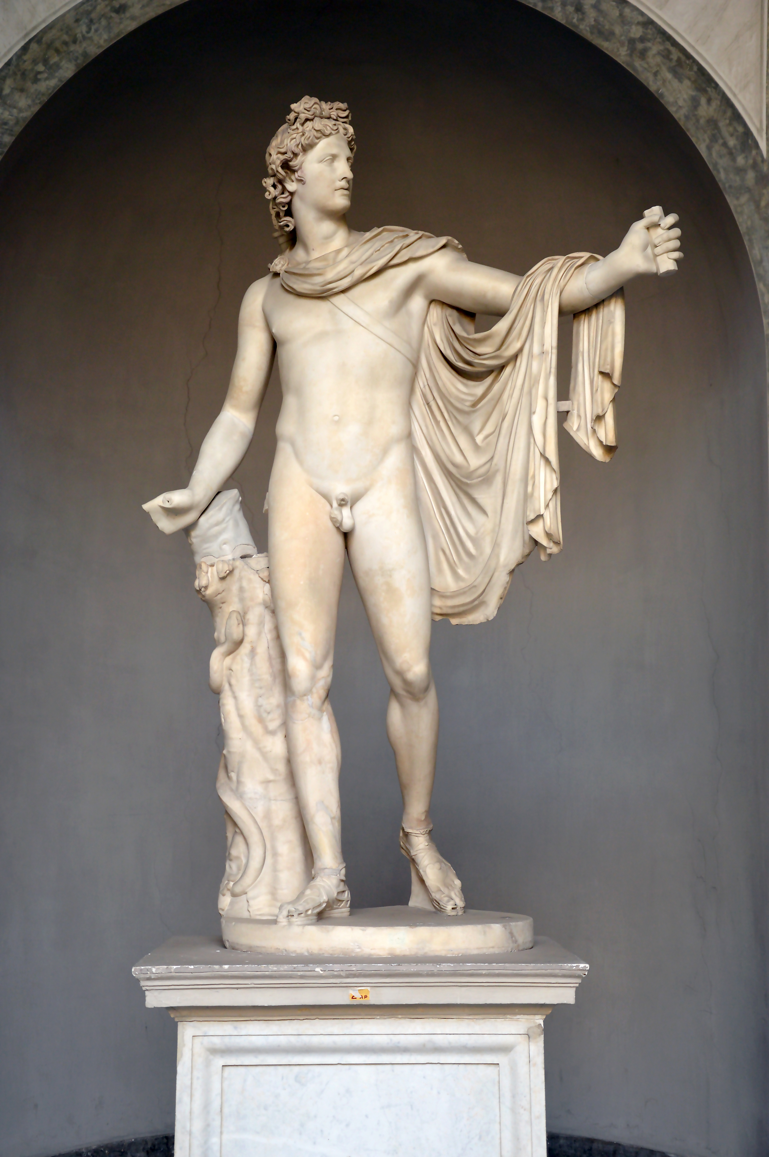 Apollo_of_the_Belvedere_Front_view.jpg