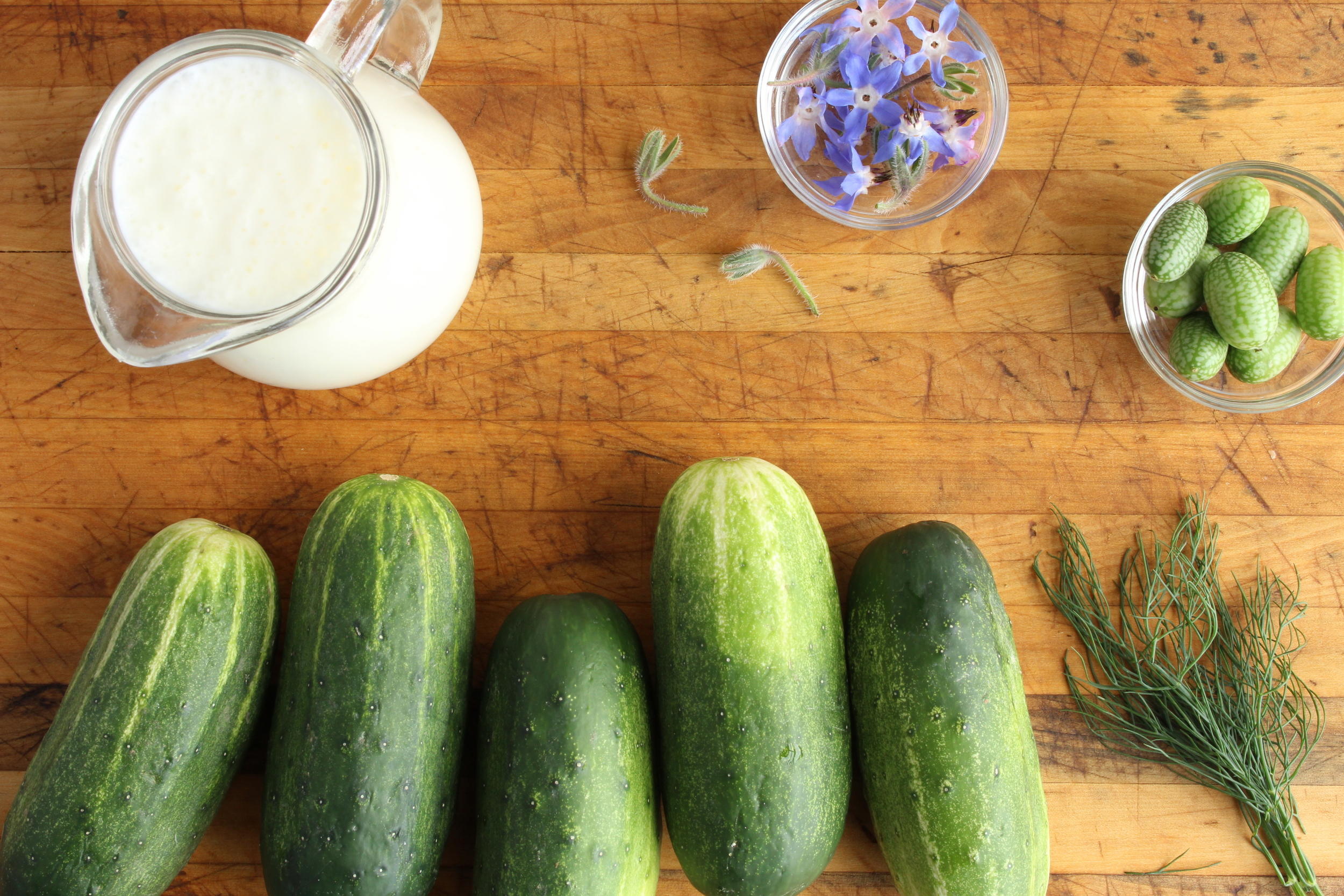 Cucumber salad mise en place: cucumbers, buttermilk, dill, and borage flowers (which have a bit of cucumber flavor).