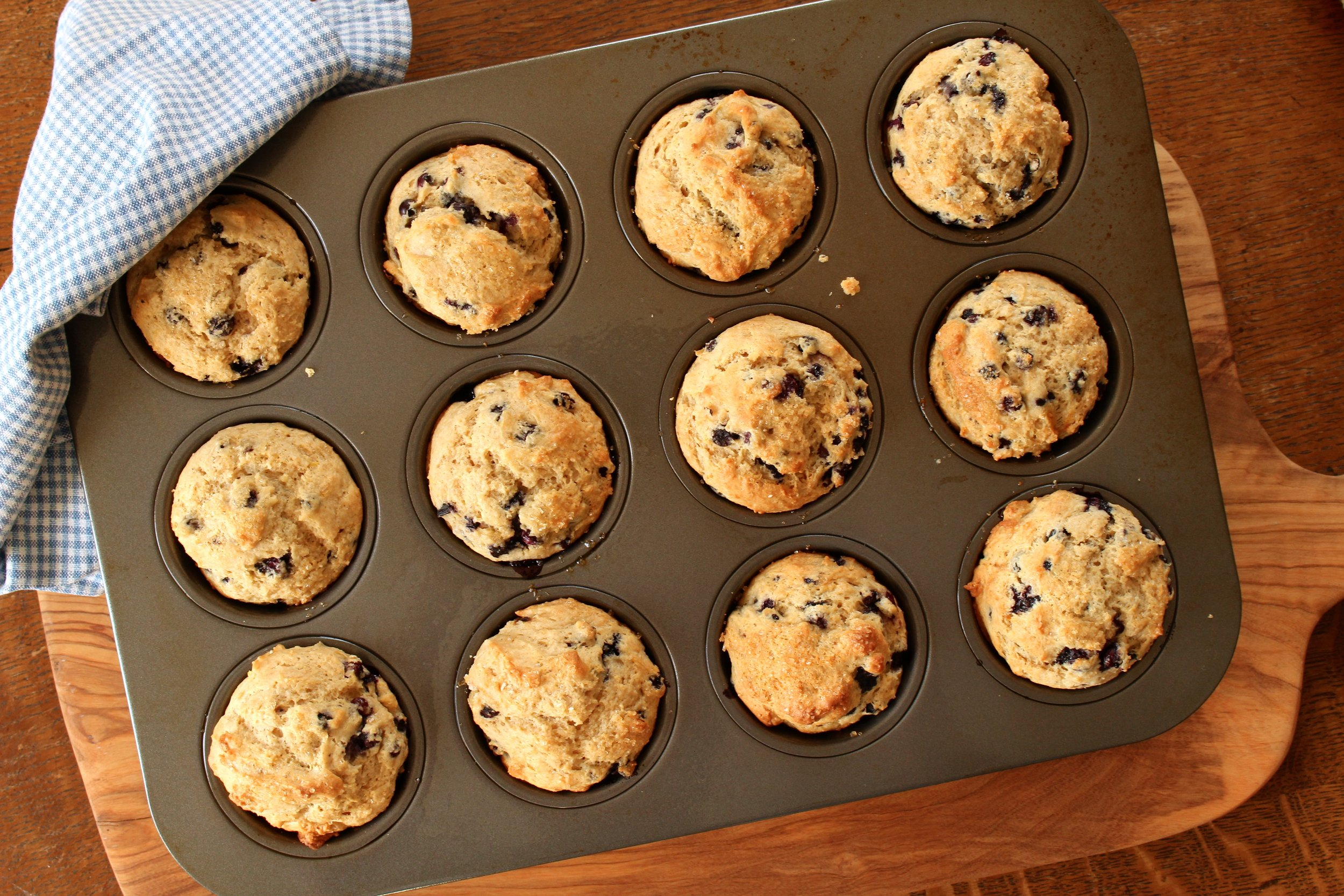 Wild Maine blueberry muffins