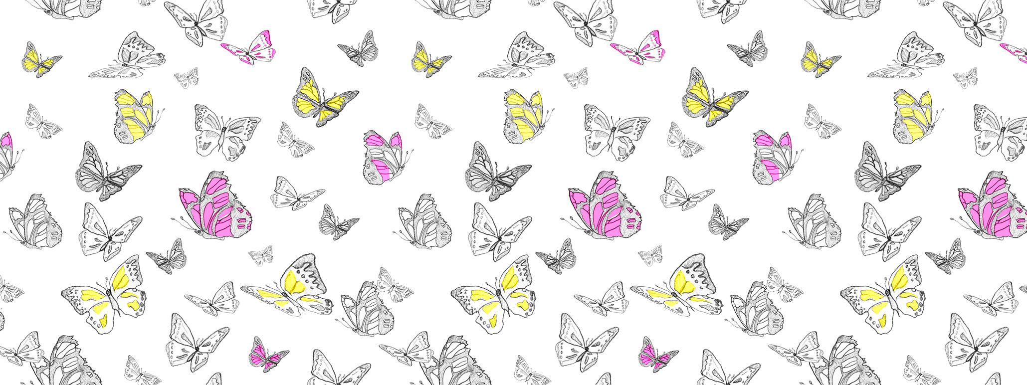 mariposaswebsite.jpg