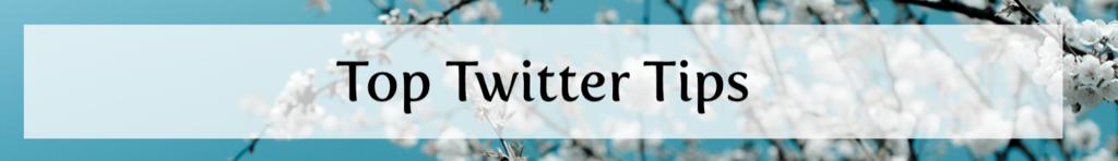 Twitter%2BSnippet.png