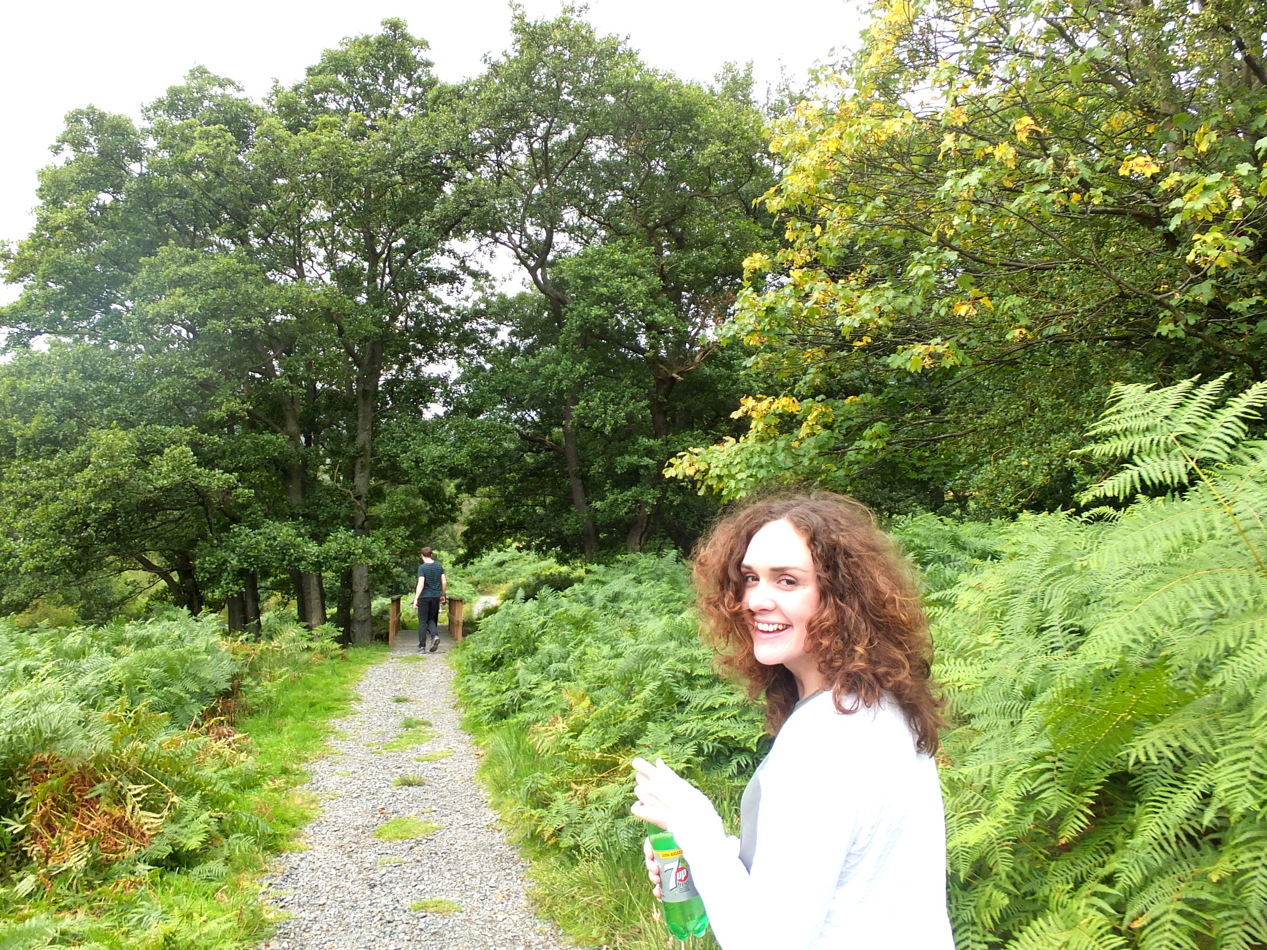 A Walk To Aira Force