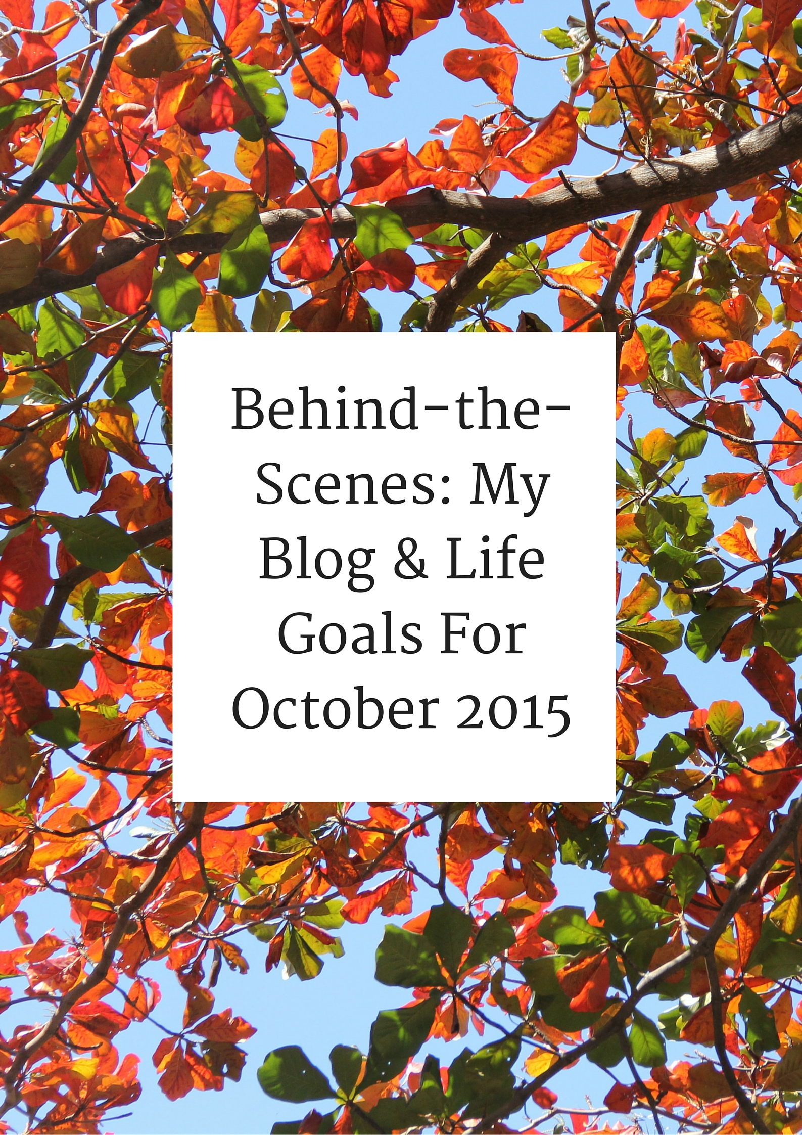 Behind-the-Scenes: My Blog & Life Goals For October 2015