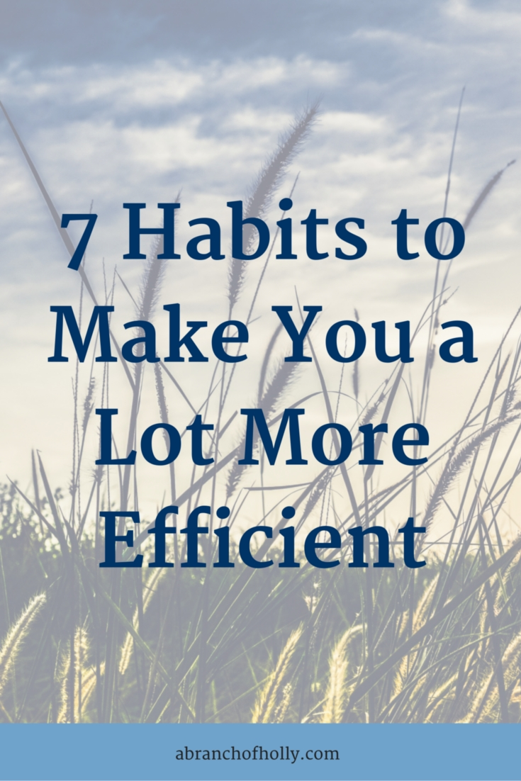 7 Habits To Make You A Lot More Efficient