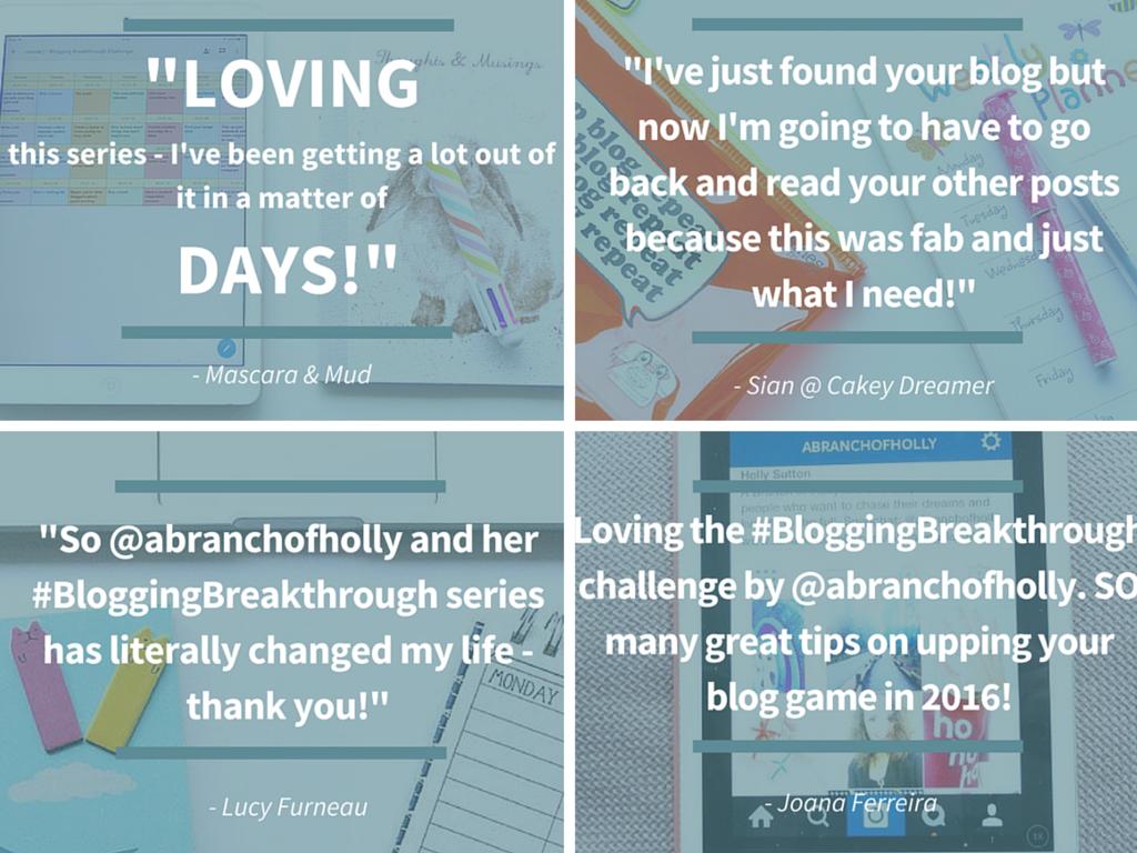 a branch of holly blogging breakthrough