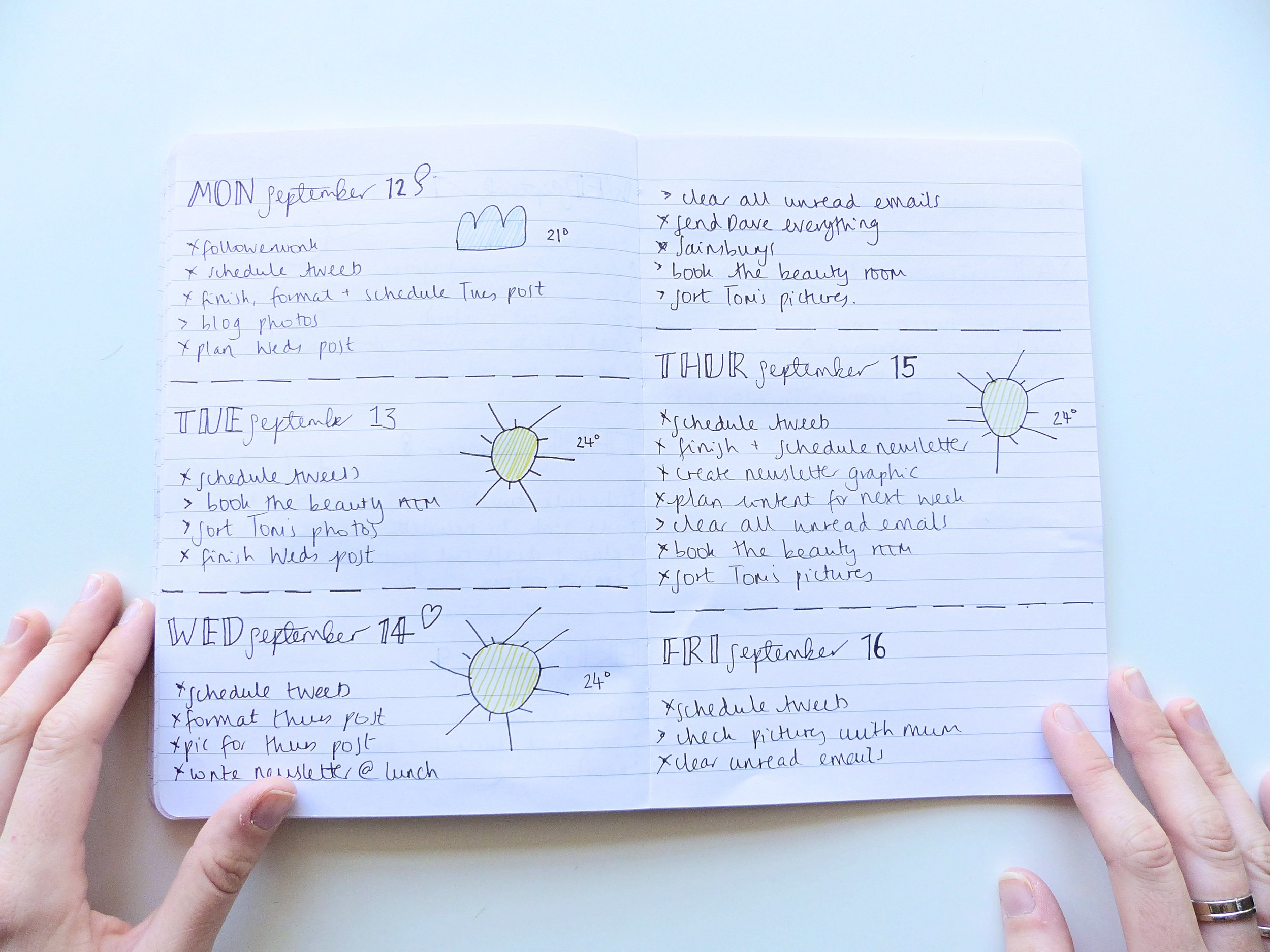 daily spreads bullet journal