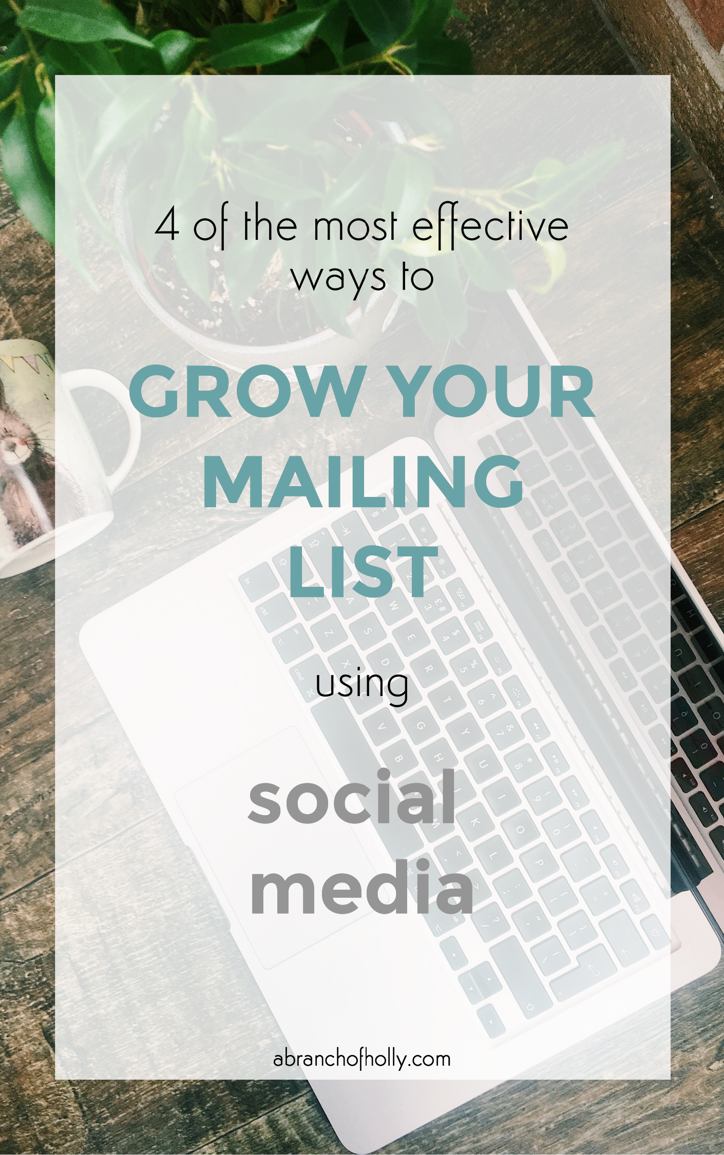 grow your mailing list with social media