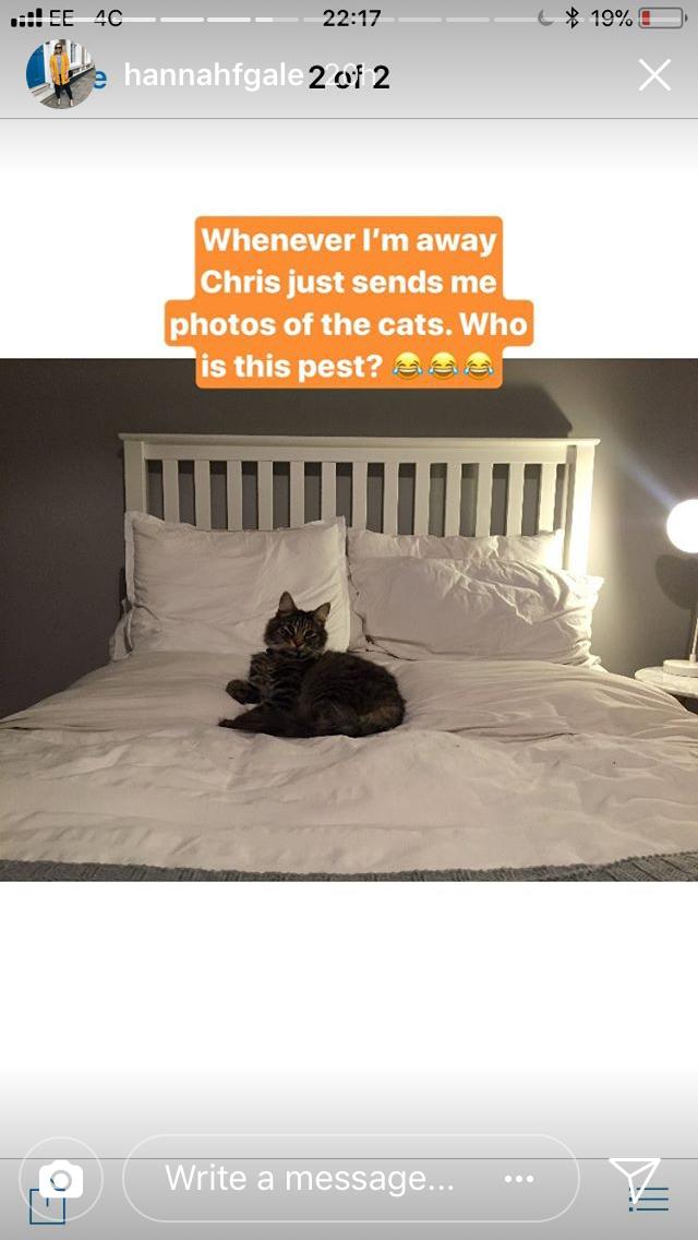 hannah gale instagram