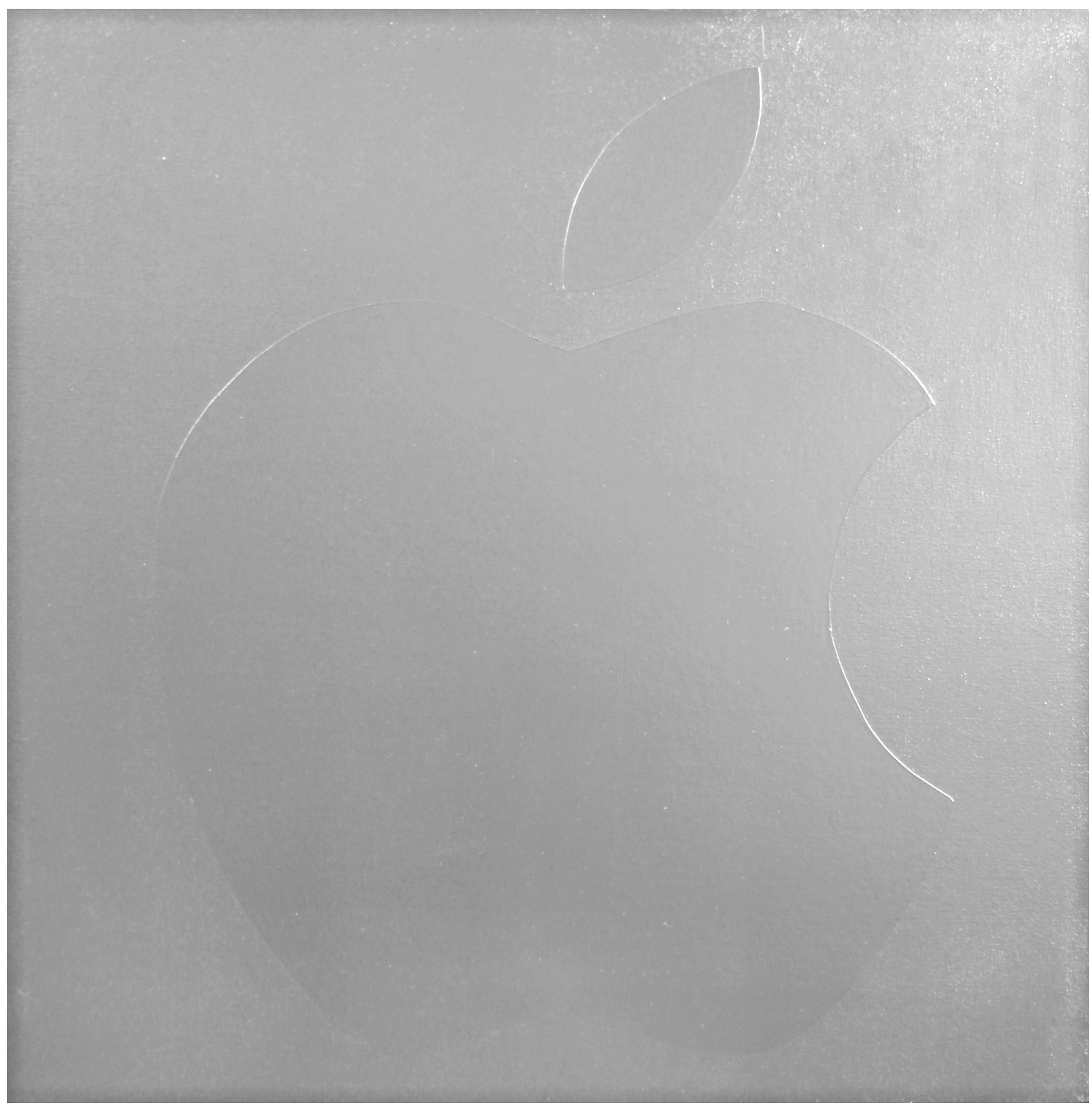 Macintosh  Industrial Paint on Canvas - 30 x 30in - 2011