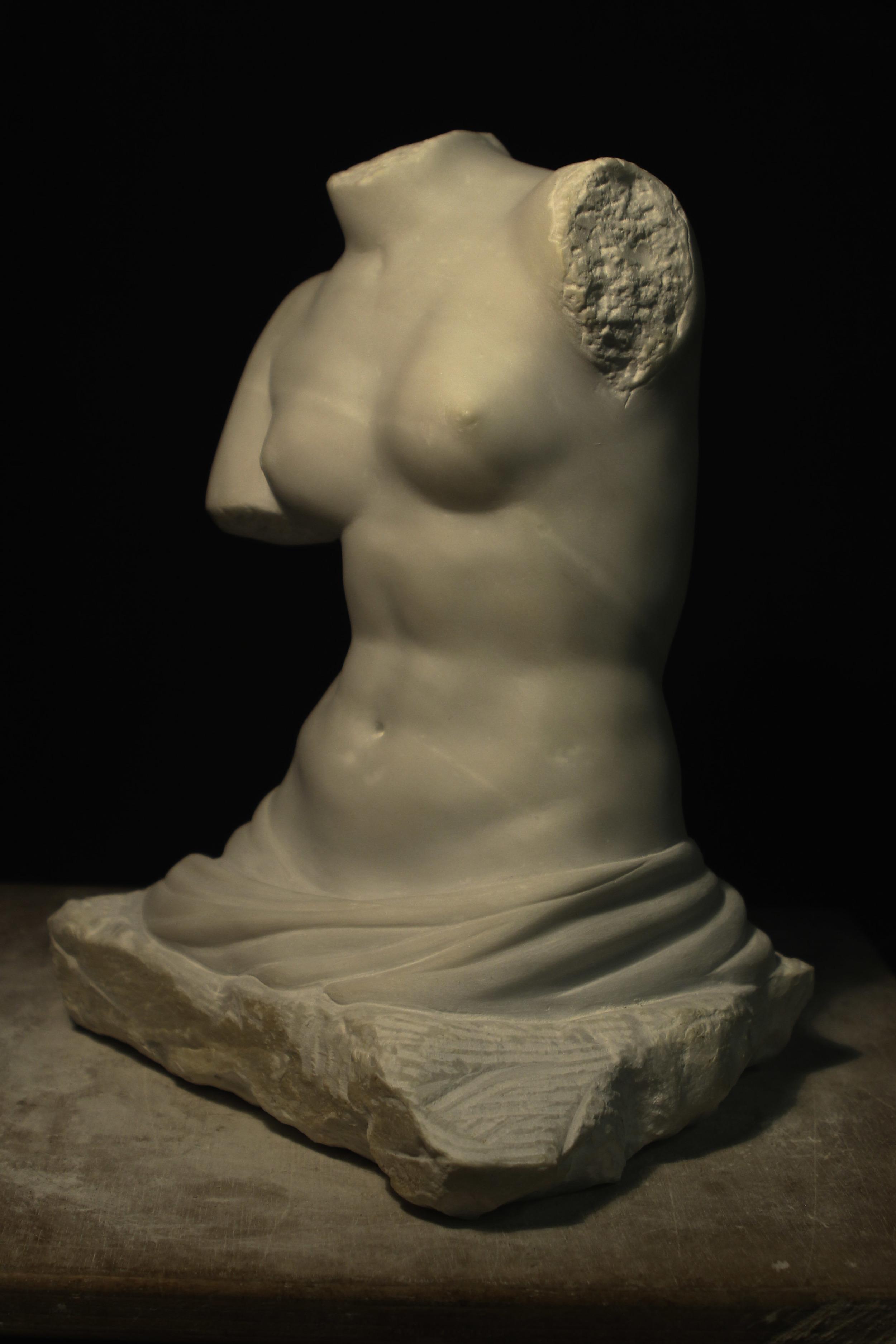 Venus 34.jpg