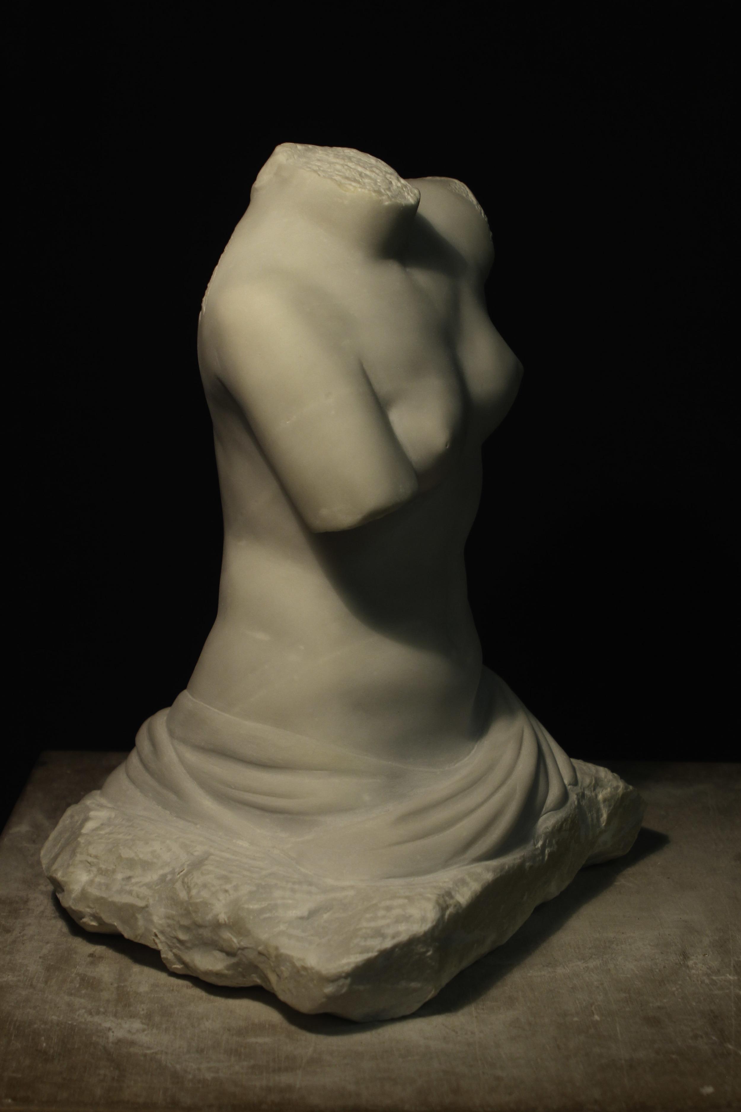 Venus side.jpg