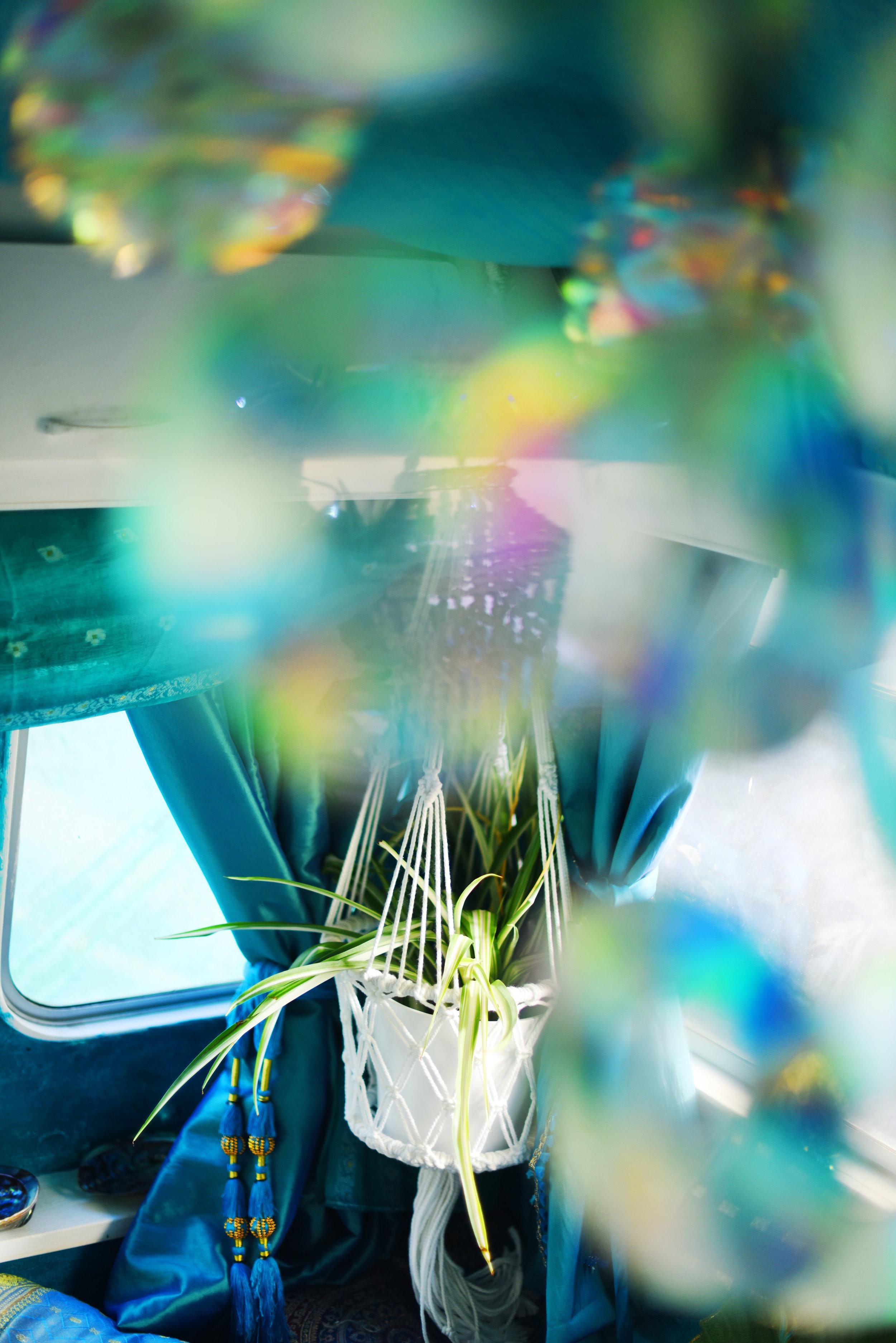 plant hanger.jpg