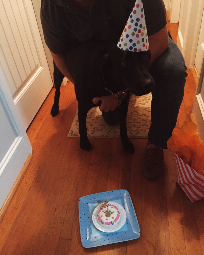 { The cutest birthday cake for the sweetest pup. }