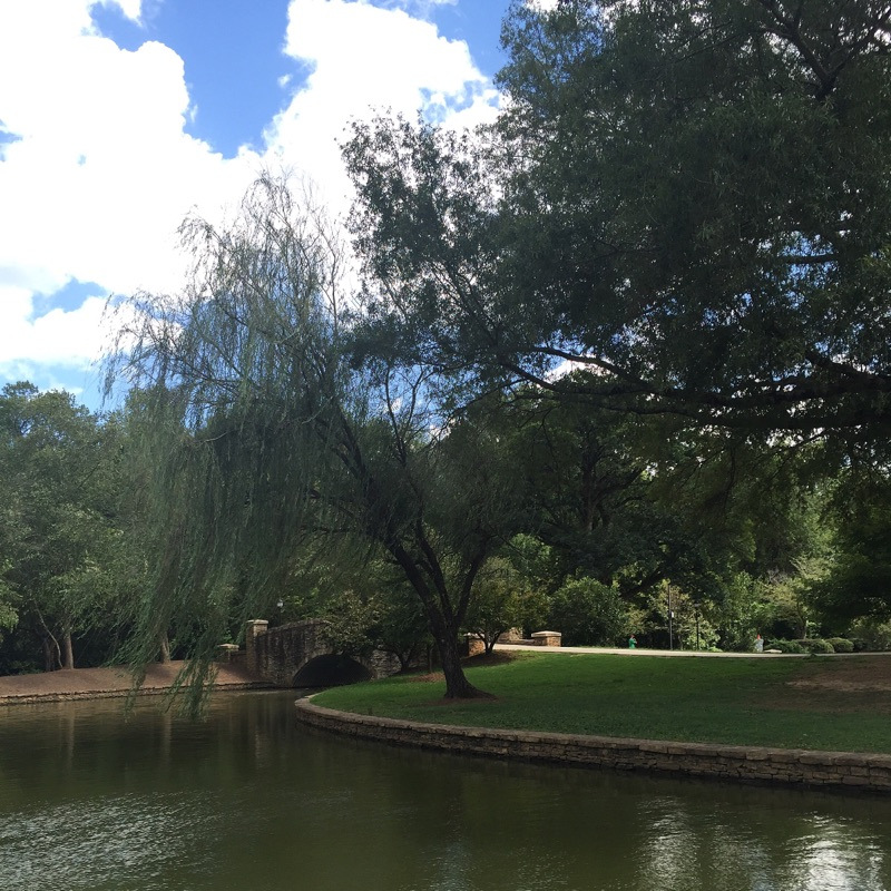 { Freedom Park looking extra pretty on a Sunday. }