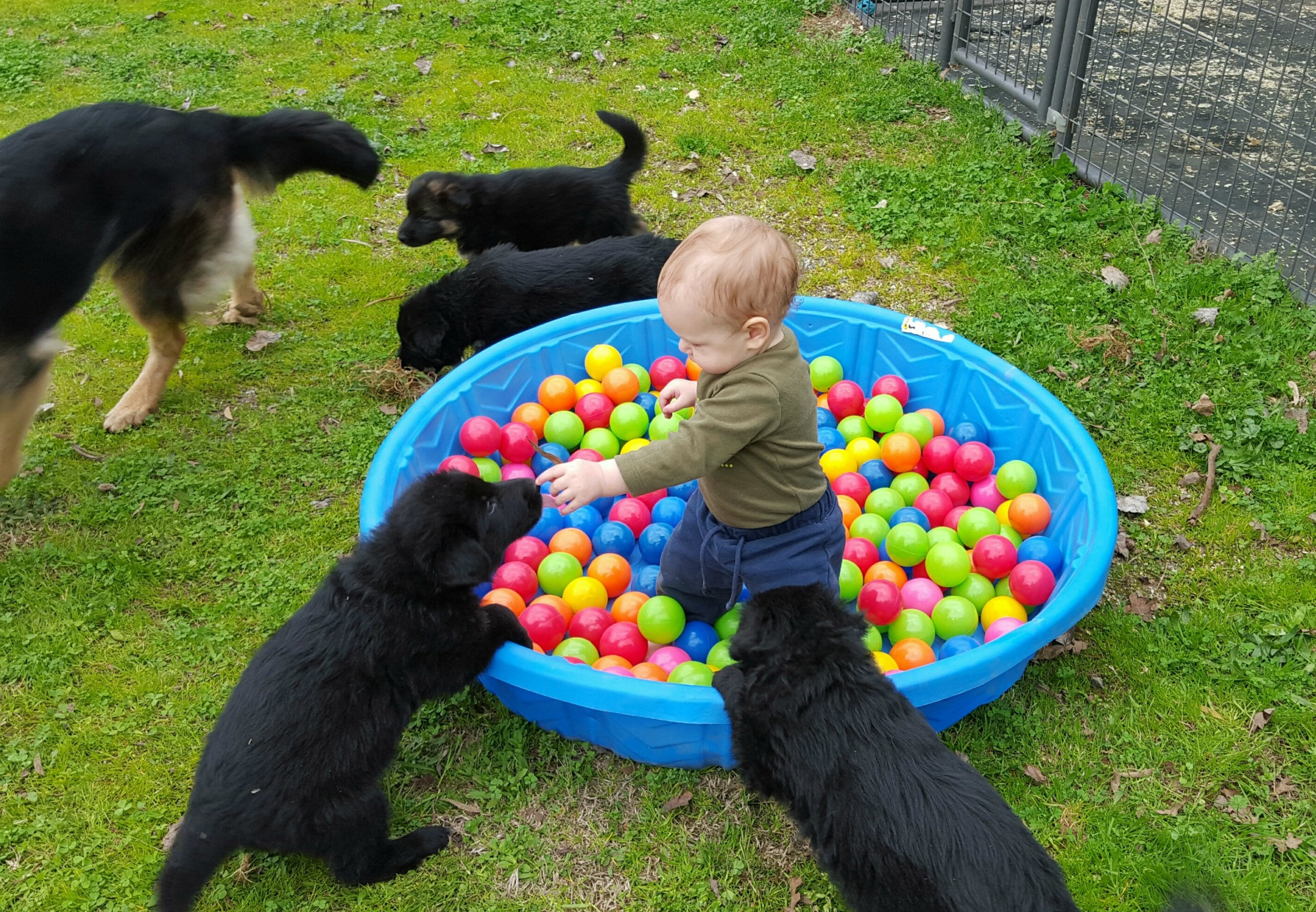 The pool with balls instead of bottles...and a baby :)