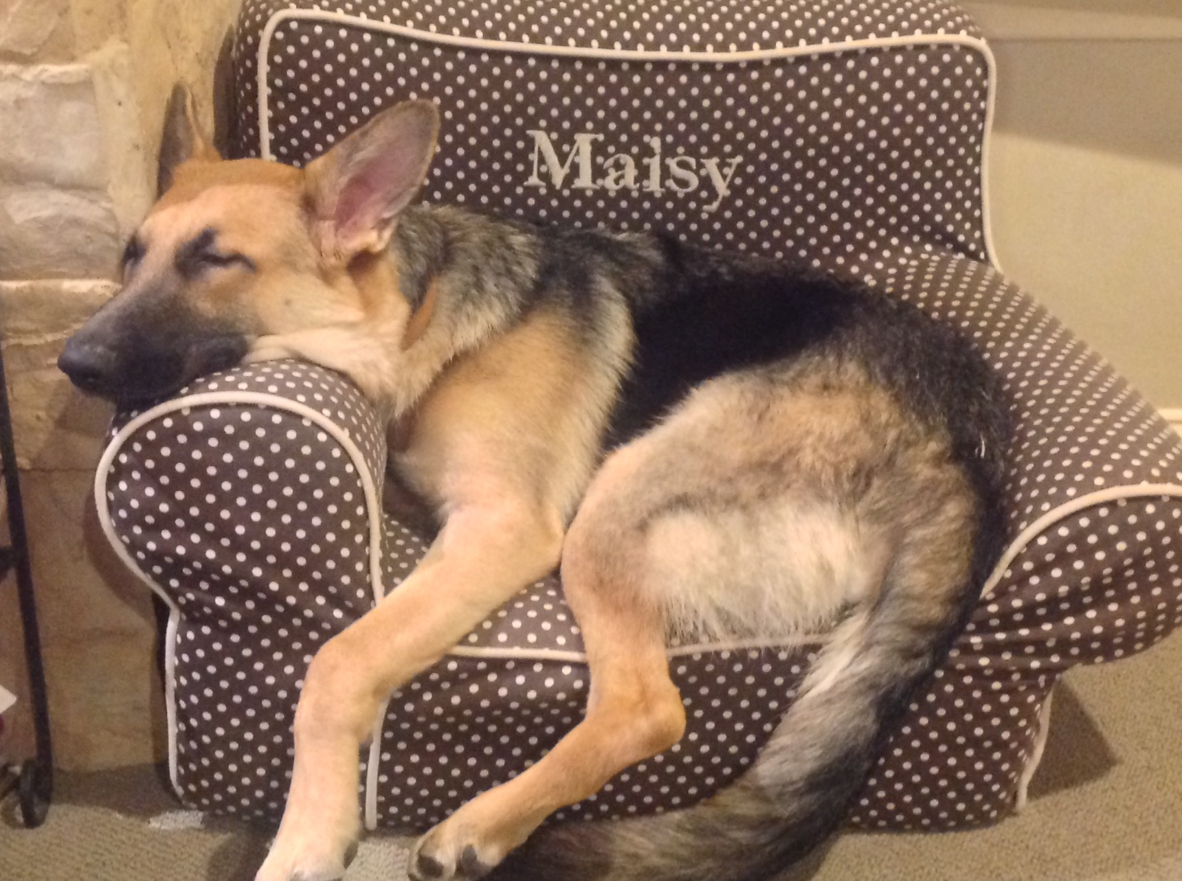 Rosie too big for Maisy chair.jpg