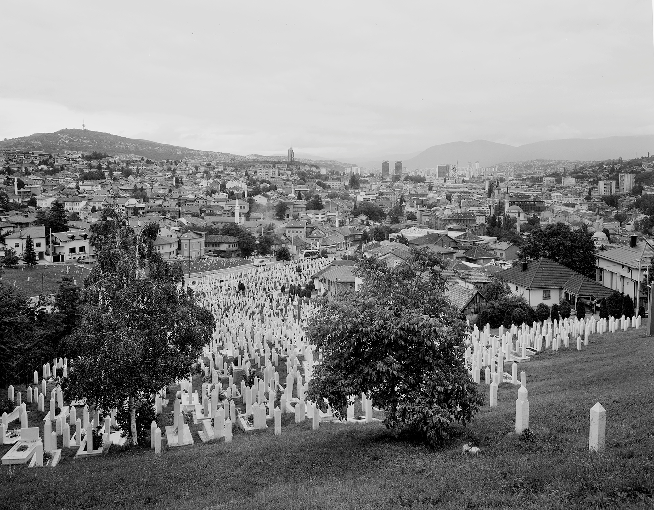 View of Sarajevo from the Martyr's Cemetary