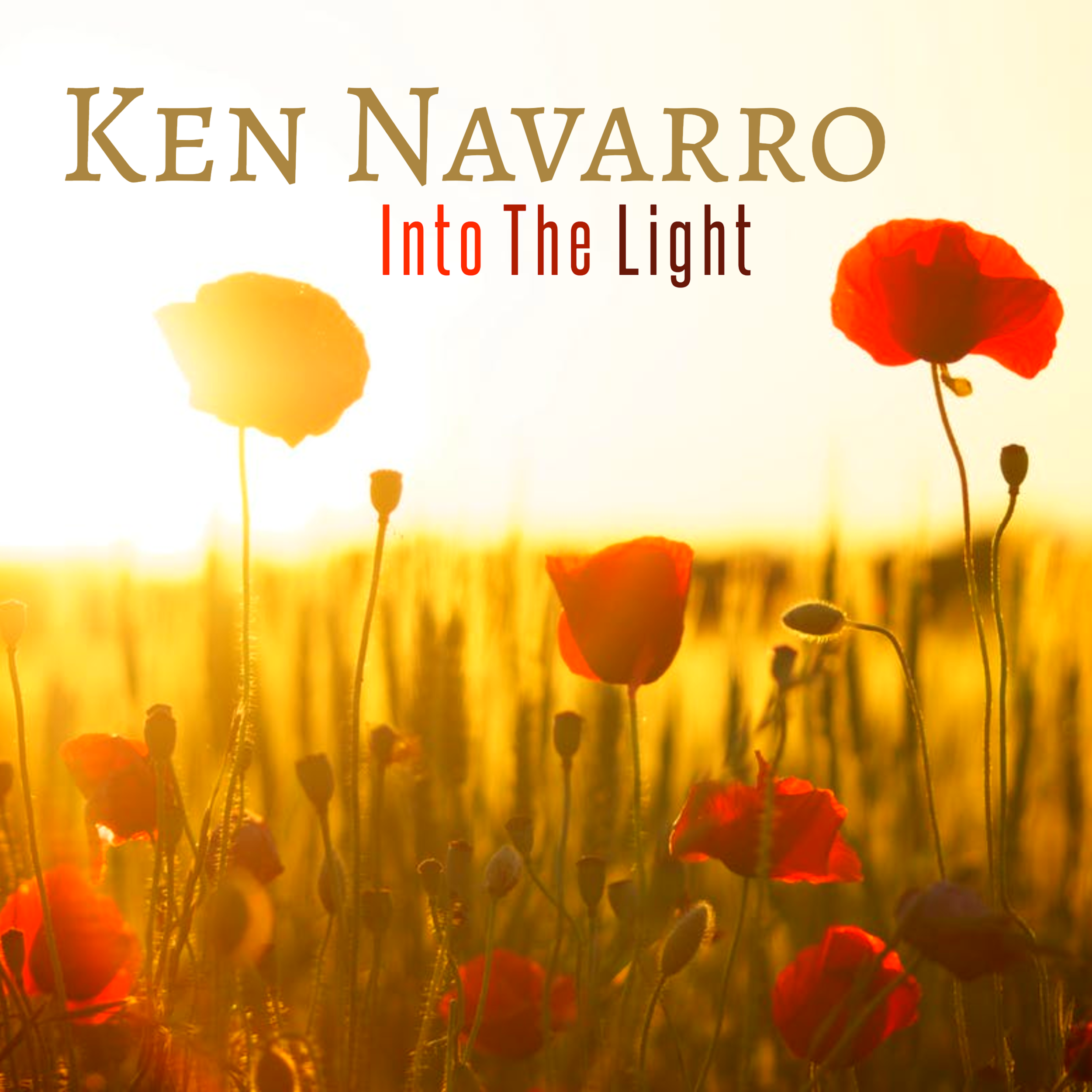 Ken Navarro Into The Light Cover Final.png