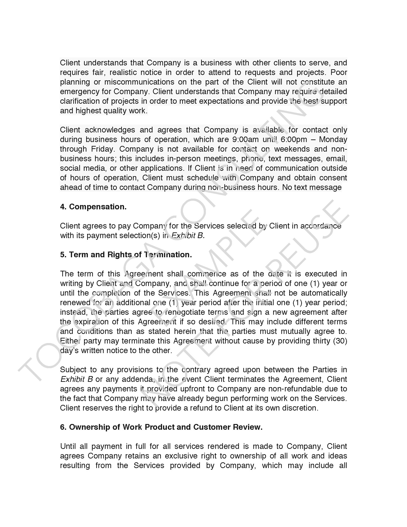 Company Services Agreement EXAMPLE_Page_03.jpg