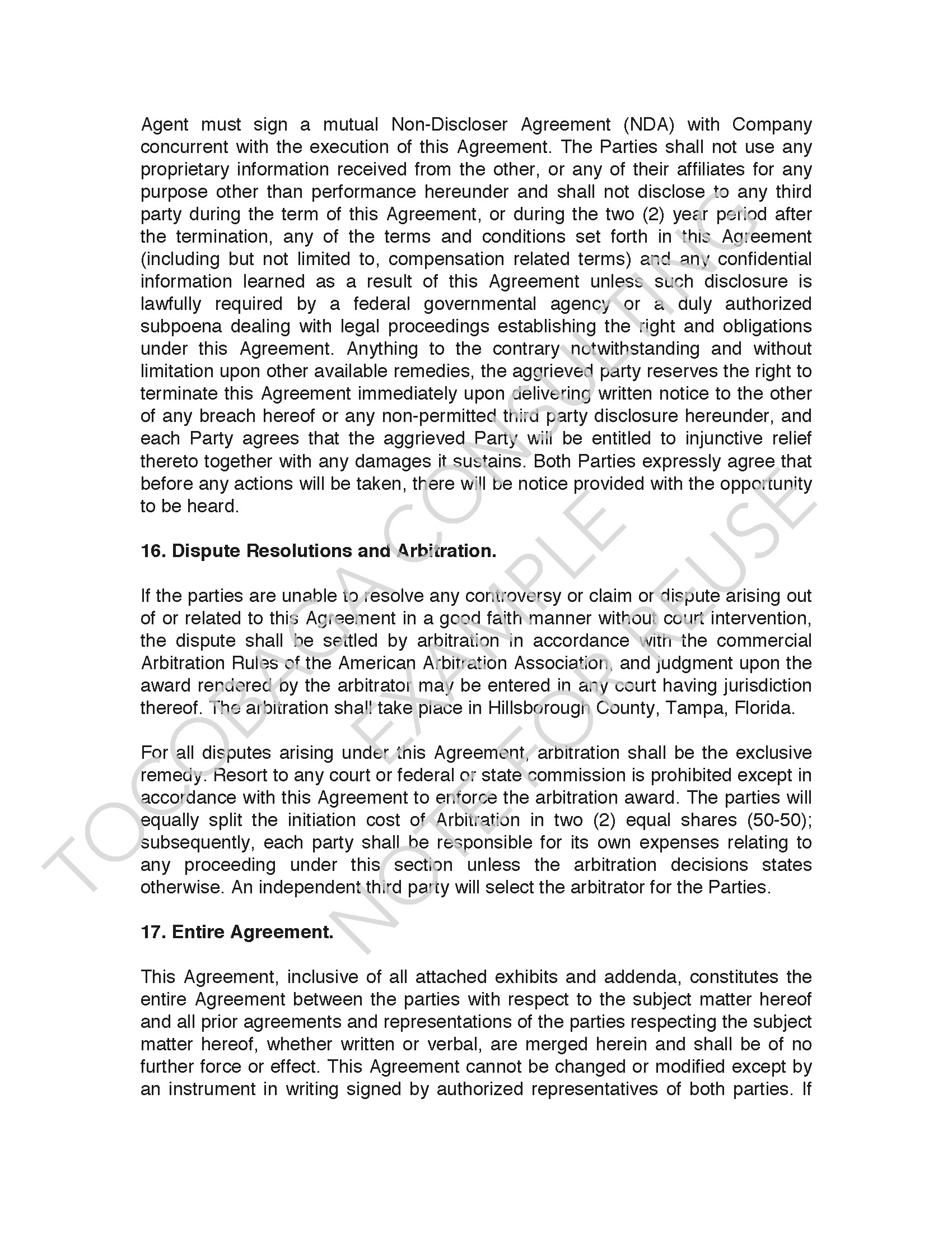 Company Services Agreement EXAMPLE_Page_07.jpg