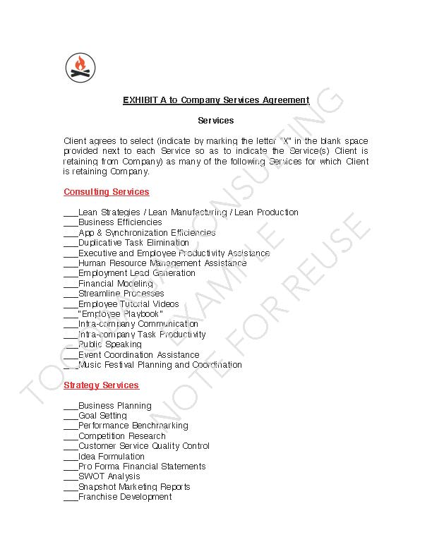 Company Services Agreement EXAMPLE_Page_09.jpg