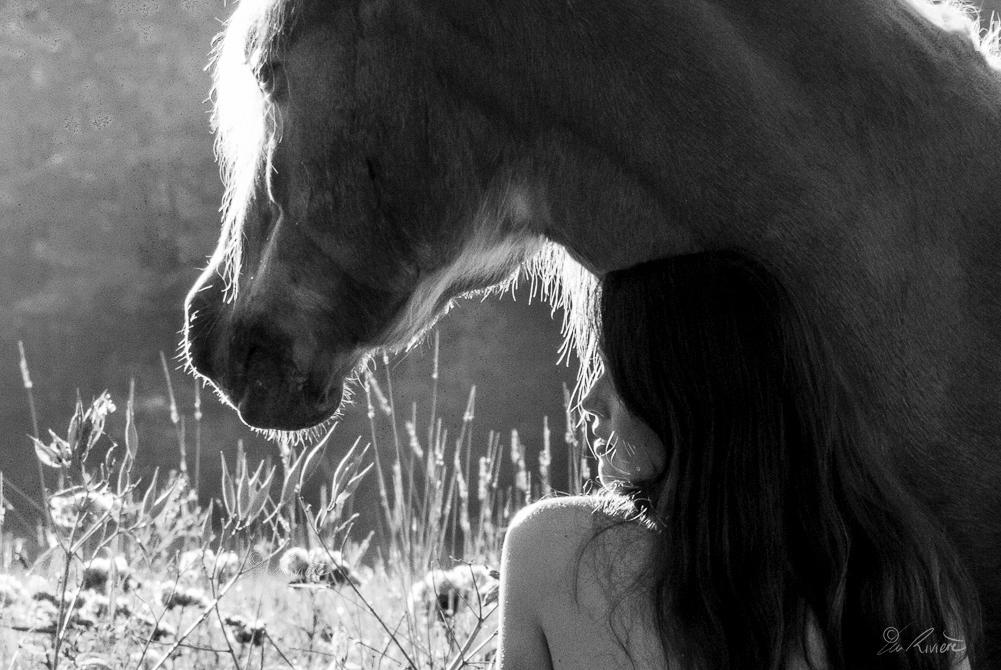 ©LÉA RIVIÈRE_ART_passion_horse8.jpg