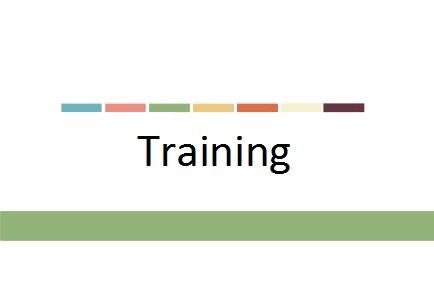 Tracey Stead Development Training