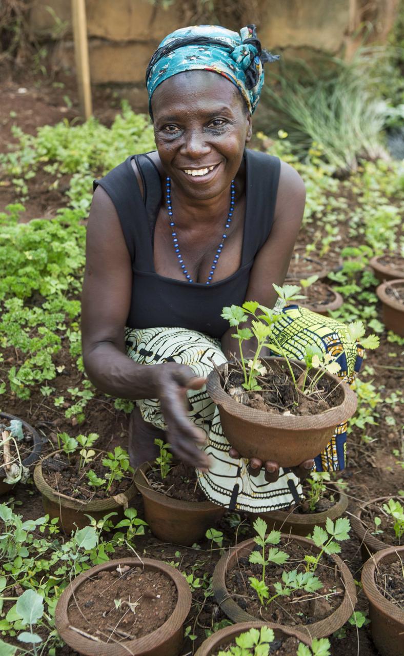 Herb Garden Pot .png