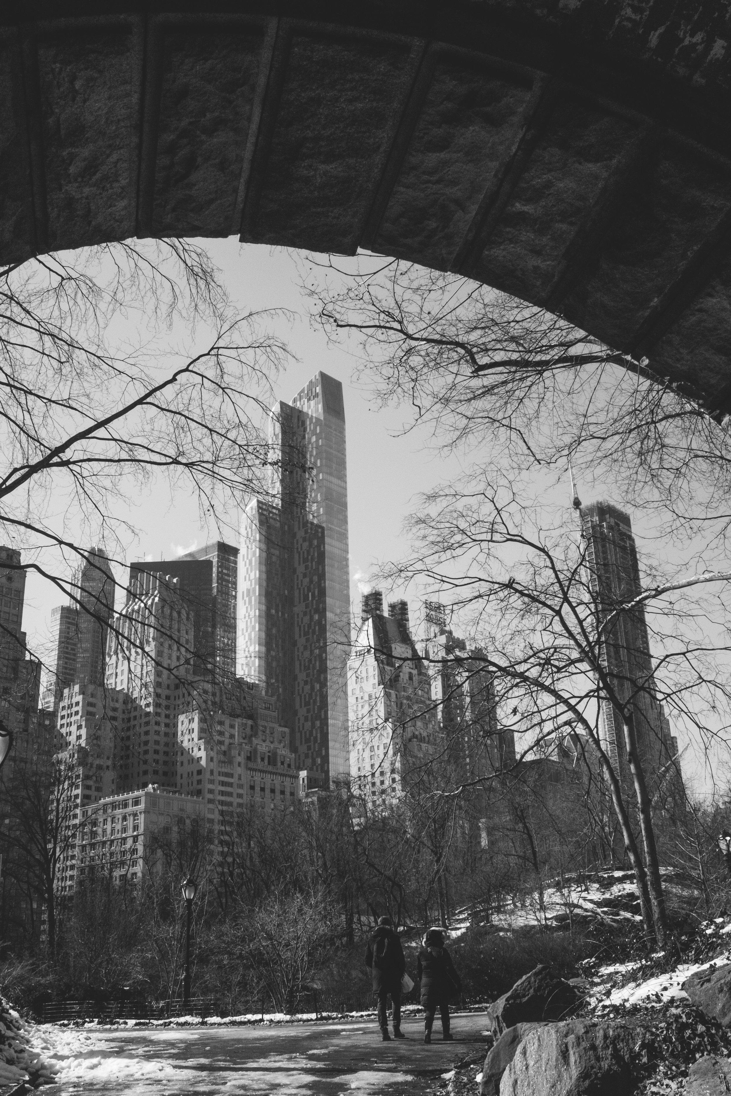 a Frozen Central Park