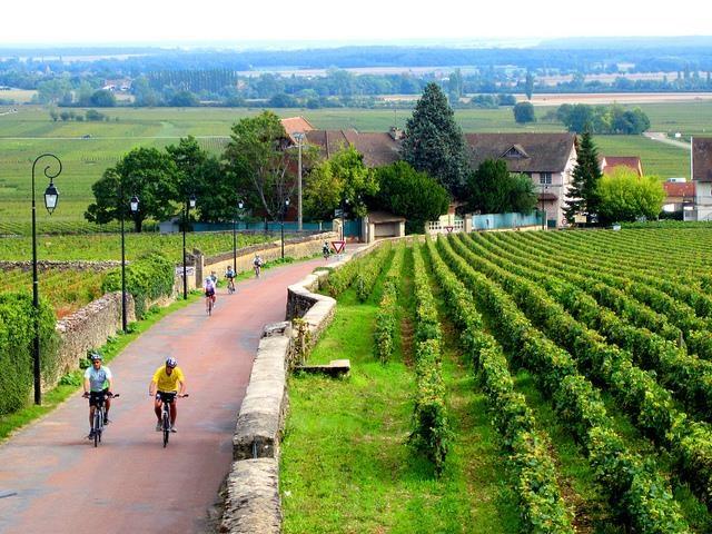 Biking-tours