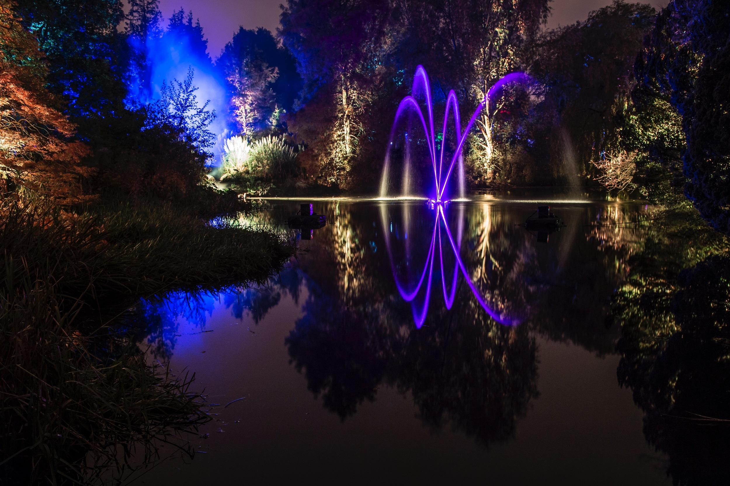 Award winning Botanic Lights at the Royal Botanic Gardens in Edinburgh is back.  As night falls, visitors can follow a magical trail of light through the Botanics. 2.jpg