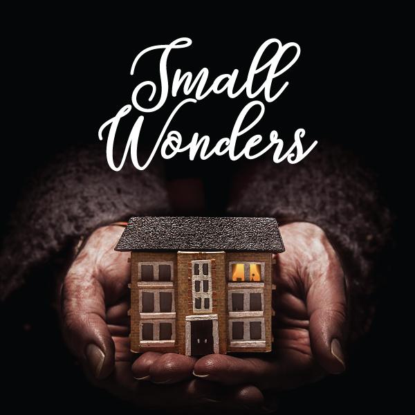Small_Wonders_Title.jpg