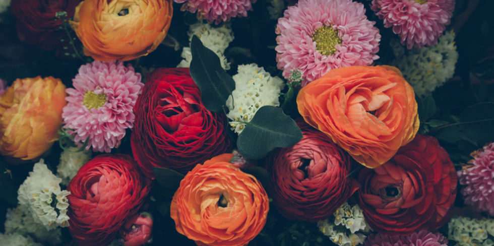 The Hidden Meaning Behind 10 Popular Flowers