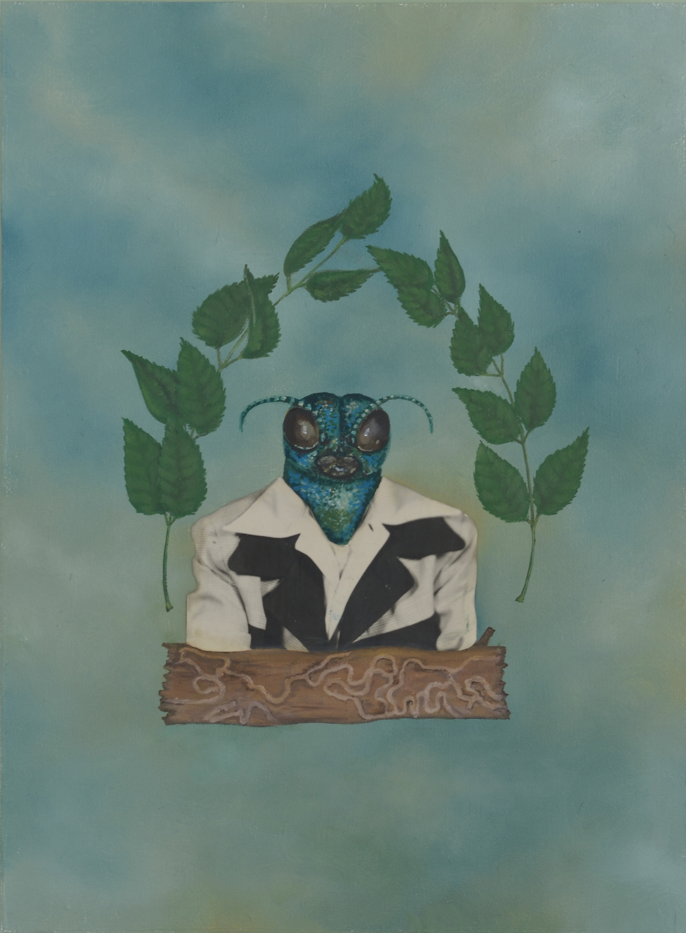 Invasive Species- Emerald Ash Borer