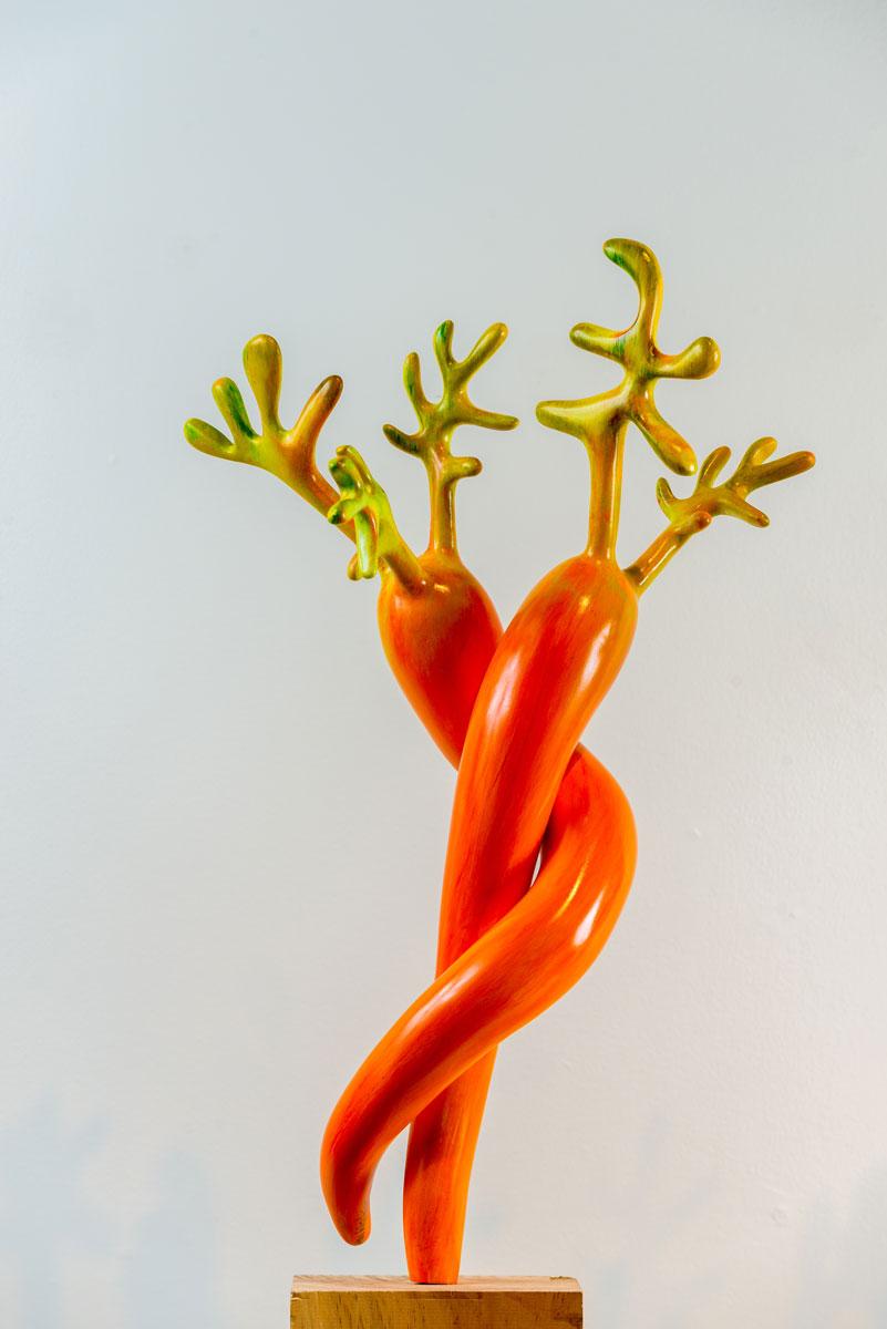 Patricias-Carrots_dk-orange.jpg