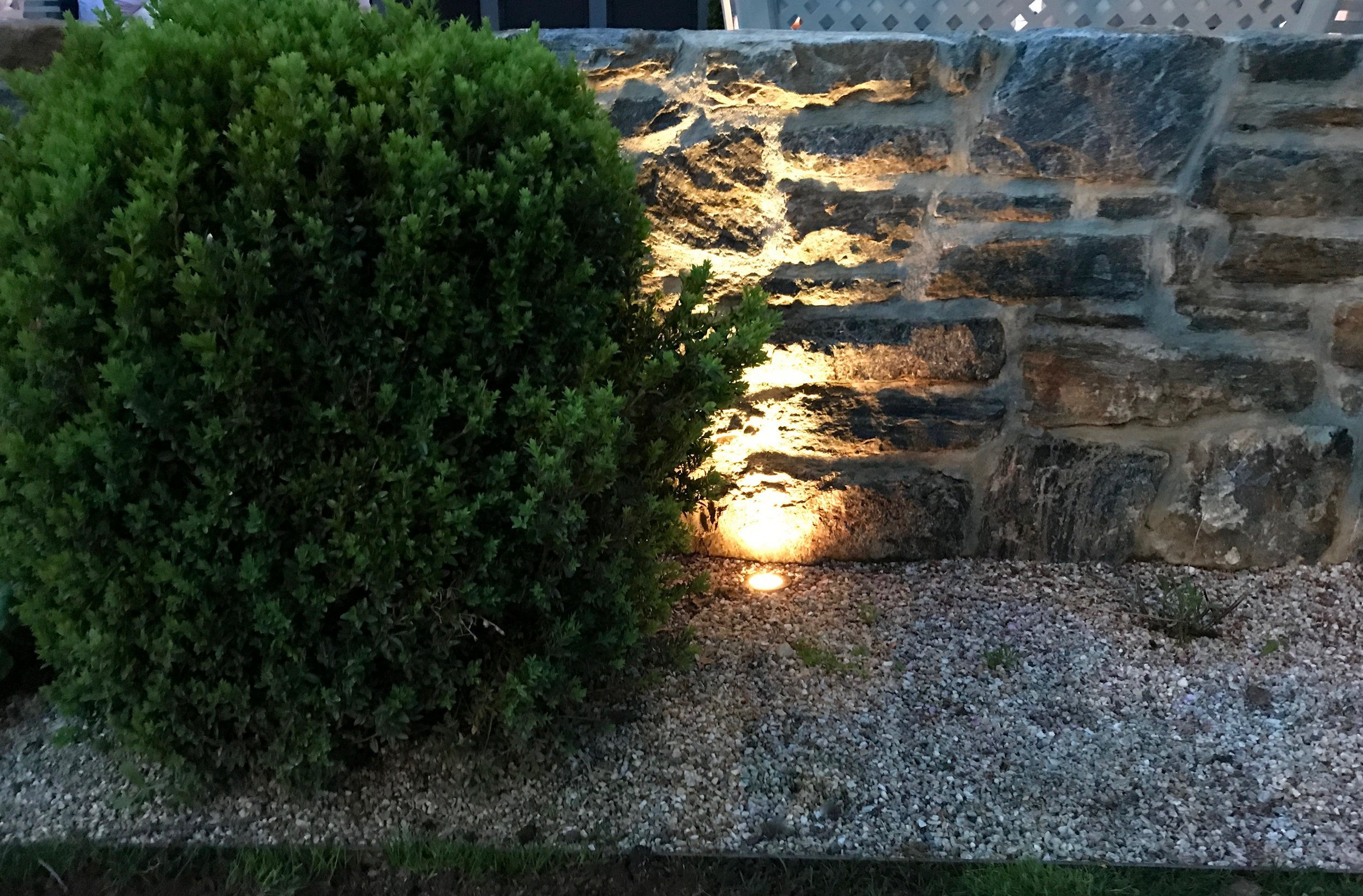 Stone Wall, Boxwood & Uplighting