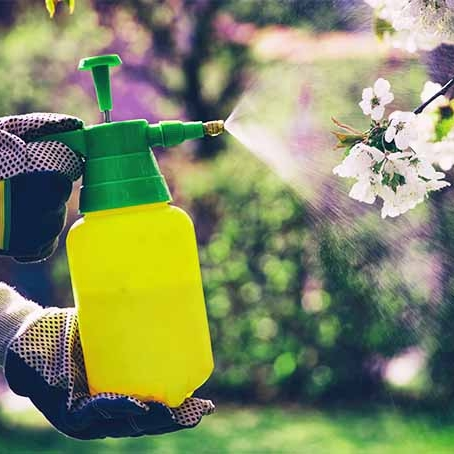 Avoid chemicals -