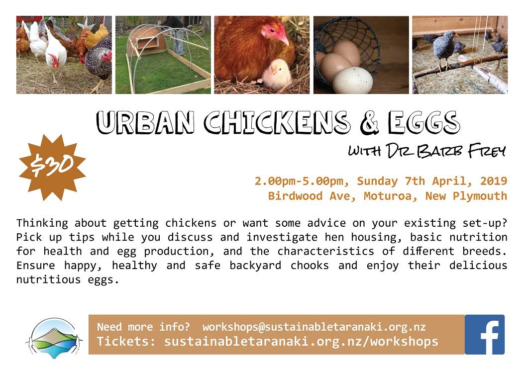Chickens & eggs workshop 2019 small.jpg