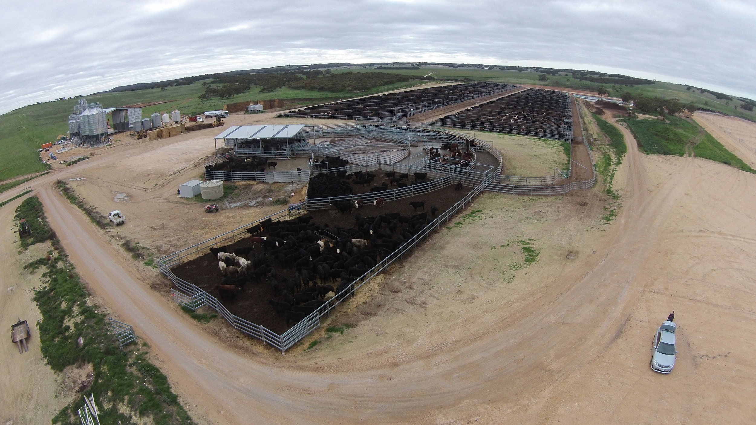 Original feedlot and induction centre