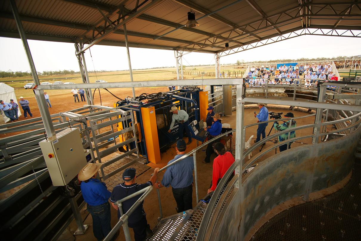 Field day at Kerwee Feedlot showing the operational and safety features that our equipment offers you